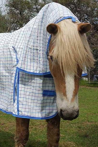 rip stop horse combo white blue front jojubi saddlery