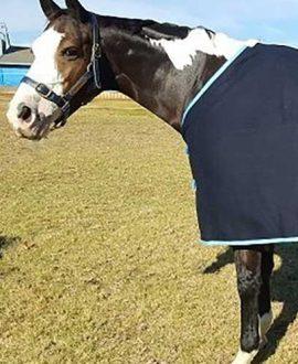 wool horse rug navy blue front left jojubi saddlery