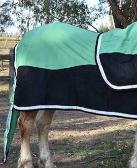 colour block horse show set green right back jojubi saddlery