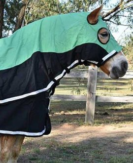 colour block horse show set green right front jojubi saddlery