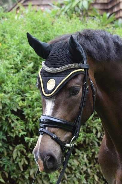performa luxe horse bonnet