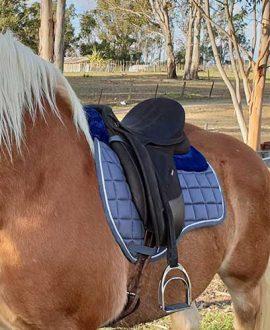 jojubi grey mink horse saddle pad2