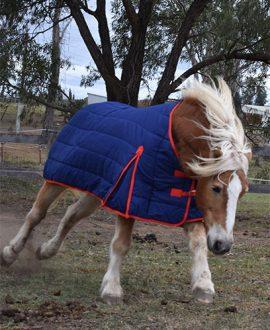 jojubi horse doona rug 1
