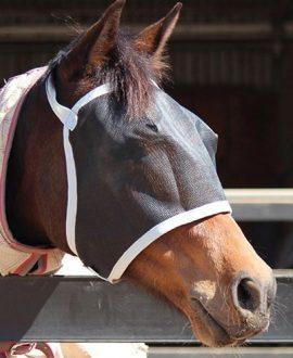horse fly veil left side jojubi saddlery