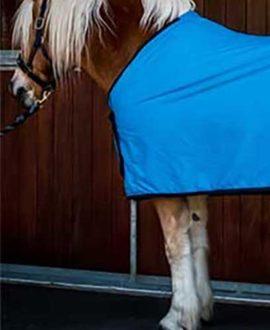 cotton tab front trophy horse rug sky blue front jojubi saddlery