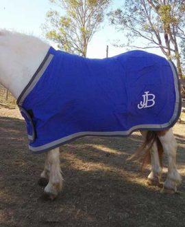 mini trophy horse rug jojubi saddlery