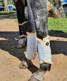 kavallerie dressage sport horse boot white on horse