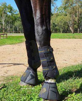 kavallerie overreach horse boots black on horse