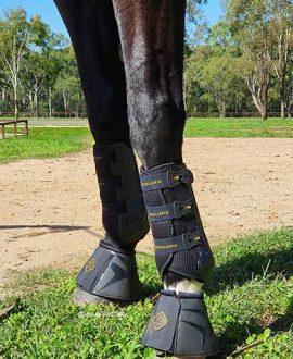 kavallerie pro k dressage horse boots black on horse