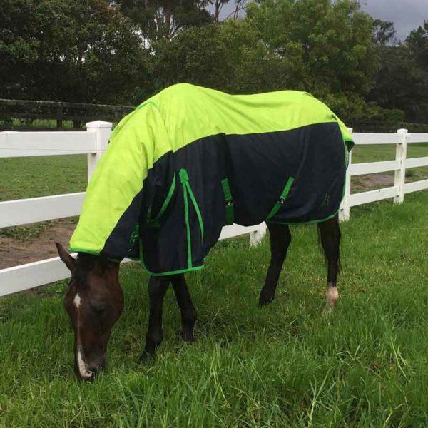 900d rain sheet horse combo left front jojubi saddlery 800