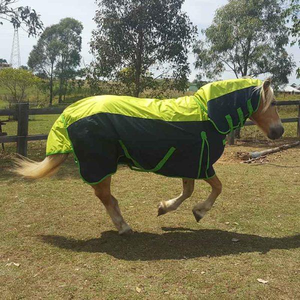 900d rain sheet horse combo right side running jojubi saddlery 800