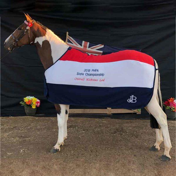 embroidery tri colour trophy horse rug jojubi saddlery 800