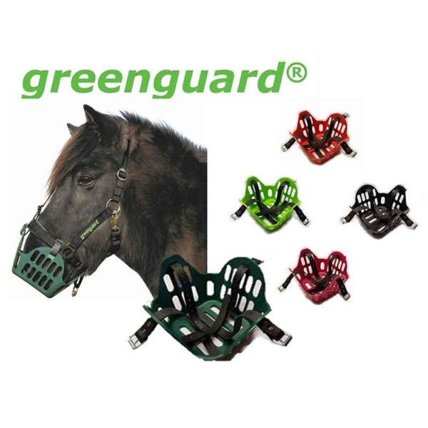 greenguard horse grazing muzzle multiple colours 800