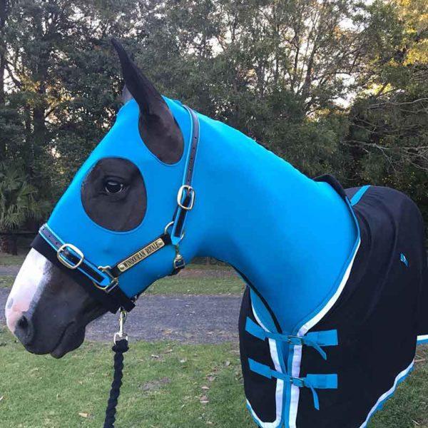 lycra horse hood blue jojubi saddlery 800