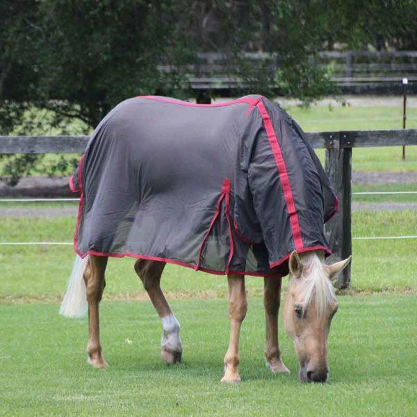 micro mesh horse rug combo right front eating jojubi saddlery 800