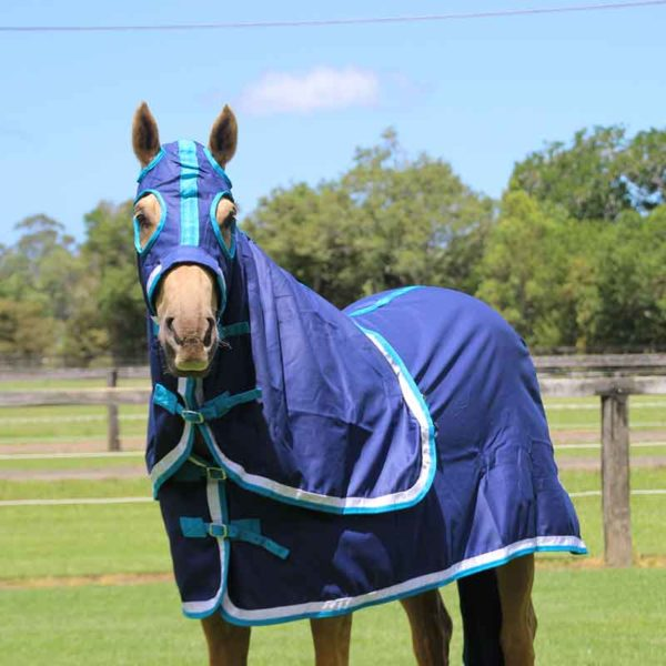 show set horse rug navy teal front left side jojubi saddlery 800