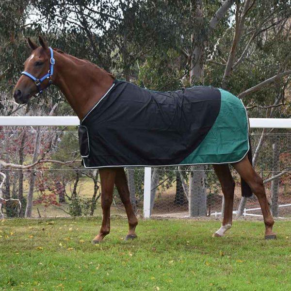 trophy horse rug colour block black green left side jojubi saddlery 800