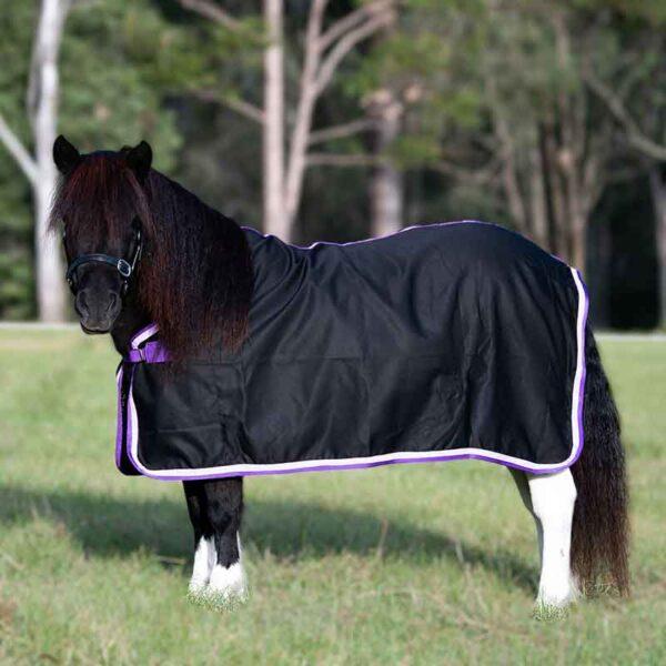 mini horse rugs black purple binding left side jojubi saddlery 800