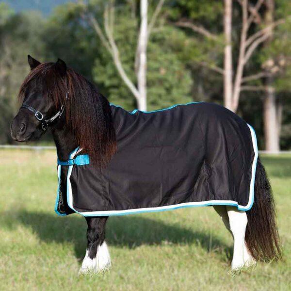 mini horse rugs black teal binding left side jojubi saddlery 800 jpg
