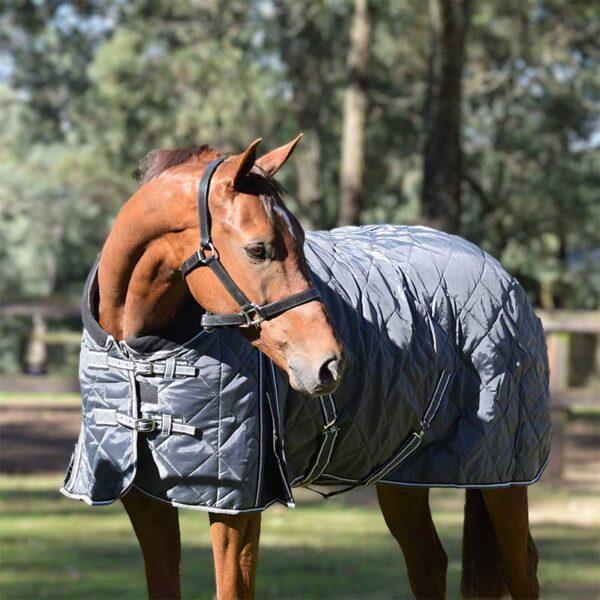 quilted stable horse doona grey front buckles jojubi saddlery 800