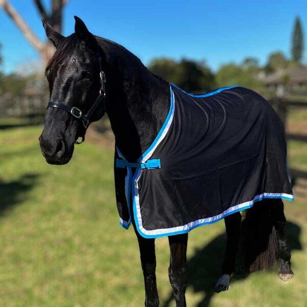 trophy horse rug black aqua front left jojubi saddlery 800