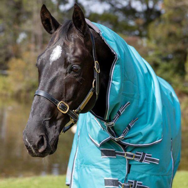 1200d winter combo 100 fill horse rug teal front halo jojubi saddlery 800