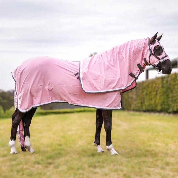 show set horse rug pink right side jojubi saddlery 800